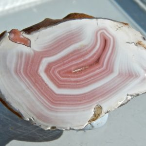 PORCELAIN AGATE, AGATE CREEK NTH QLD.